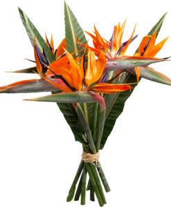 1.Ανθοδεσμες λουλουδιων