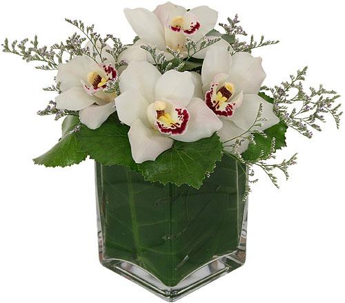 αποστολή λουλουδιών Αθήνα ,Ανθοπωλεία γιά Αθήνα,flowershops, athina flowers store, athina flower