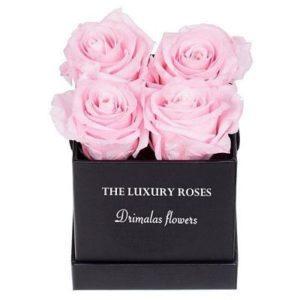 τριανταφυλλα σε κουτι
