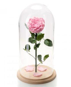 τριανταφυλλα forever roses, τριαντάφυλλα για πάντα, τριαντάφυλλα μέσα σε γυαλί