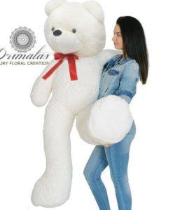 Αρκούδος 2m