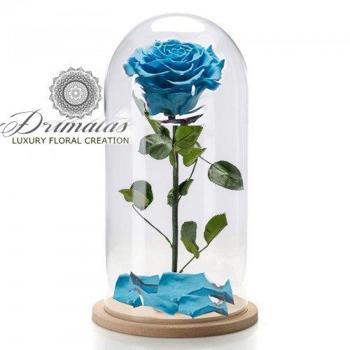 4fb5d5899f6 Τριανταφυλλα που ζουν για Παντα - ETERNITY ROSES - Ανθοπωλεια Δριμάλας
