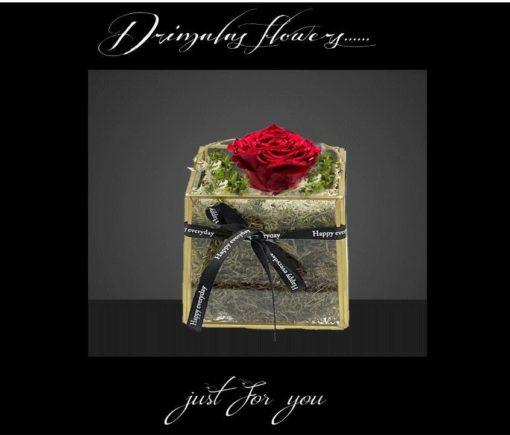 Τριαντάφυλλα που ζουν για Πάντα, τριανταφυλλα που ζουν για παντα skroutz, τριανταφυλλα σε γυαλα