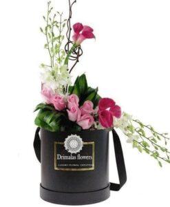 Λουλούδια σε κουτιά-Συνθέσεις Λουλουδιών- Φυτά-Ανθοδέσμες