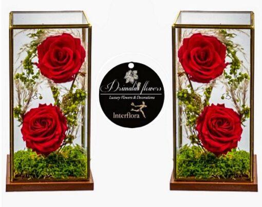 eternity roses-for ever roses , τριαντάφυλλα για πάντα