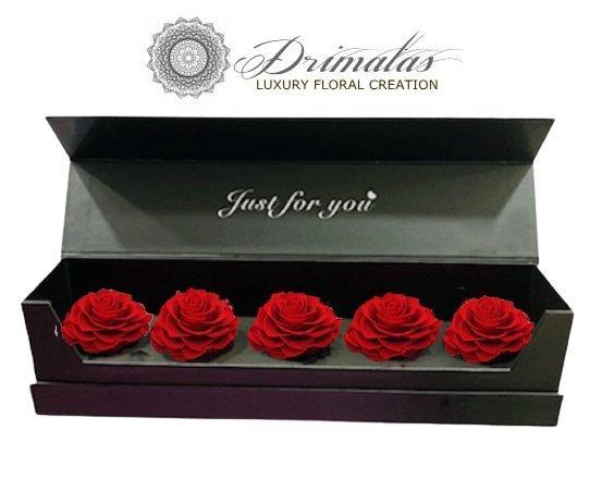 Forever Roses,Αποχυμωμένα τριαντάφυλλα