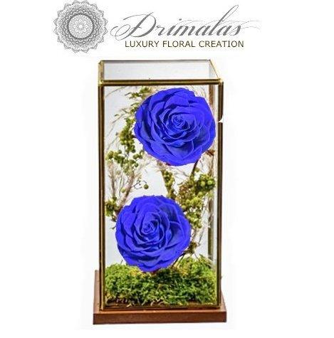 Eternity roses, Forever roses, Τριαντάφυλλα μεγάλης διάρκειας, Τριαντάφυλλα που ζουν για πάντα