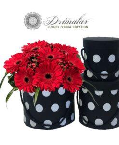 Λουλούδια σε Κουτί ,Αποστολή Λουλουδιών, Λουλουδια σε κουτι skroutz, Τριανταφυλλα σε κουτι αθηνα